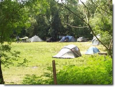 Camping La Ferme Avec Piscine Charente Maritime La